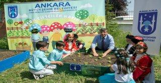 Ankara'da küçük çiftçiler iş başında