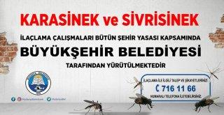 Başkan Türkyılmaz'dan Büyükşehir'e 'İlaçlama' Çağrısı