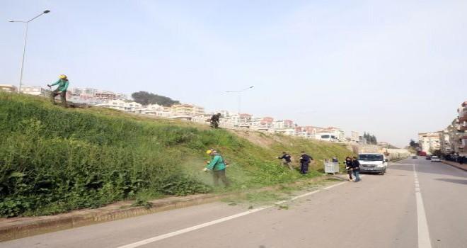 Mudanya'da bahar  temizliği başladı