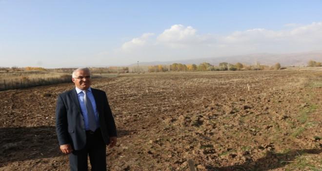 Bingöl Belediyesi ,30 dönüm araziyi  seraya dönüştürdü.